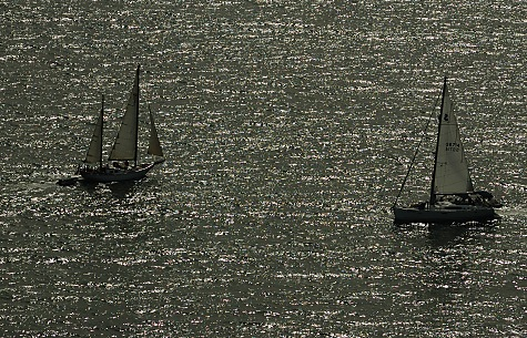 Aerial Photography Los Angeles View of Sailboats