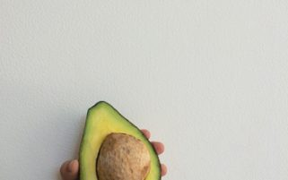 Avocado Stock Photo - Avocado in a Child's Hand - Food Stock Photos
