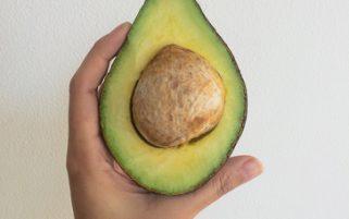 Avocado Stock Photo - Avocado in Hand - Food Stock Photos