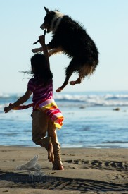 Photographer Los Angeles - Australian Shepherd Picture With Child Playing