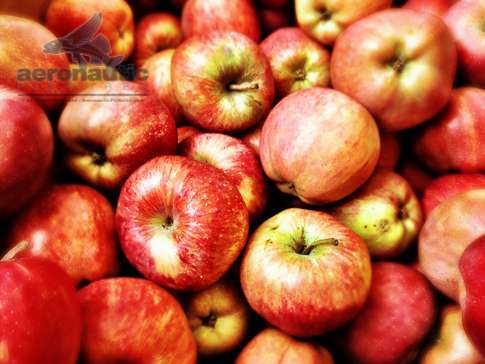 Photo of Red Delicious Apples - Food Stock Photos