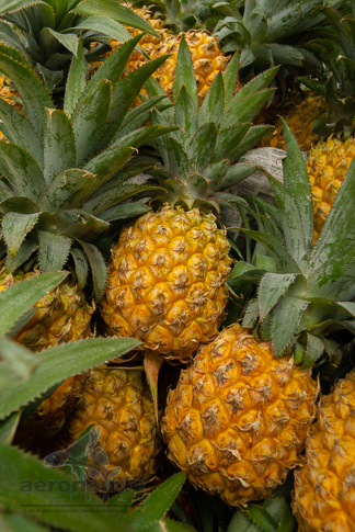 Food Stock Photo - Ripe Pineapples Download