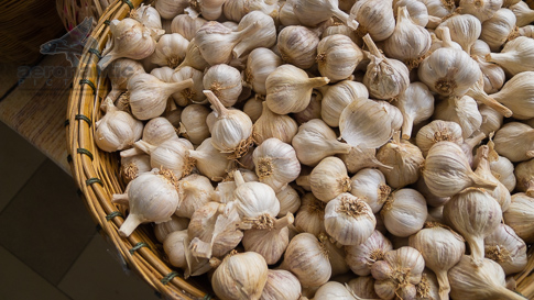 Garlic Picture - Garlic in a Woven Basket - Food Stock Photo