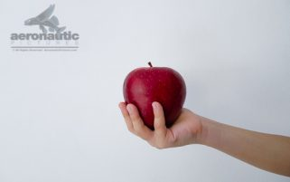Food Stock Photo - A Child's Hand Holding a Red Delicious Apple Download