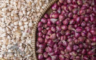 Produce Stock Photo - Garlic and Shallots in Woven Baskets Download Royalty Free